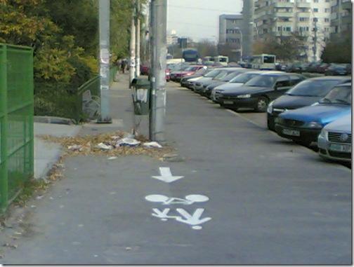pista bicicleta (1)