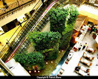 emporium_shopping_mall_bangkok_4.jpg