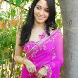 Tamannah in Saree