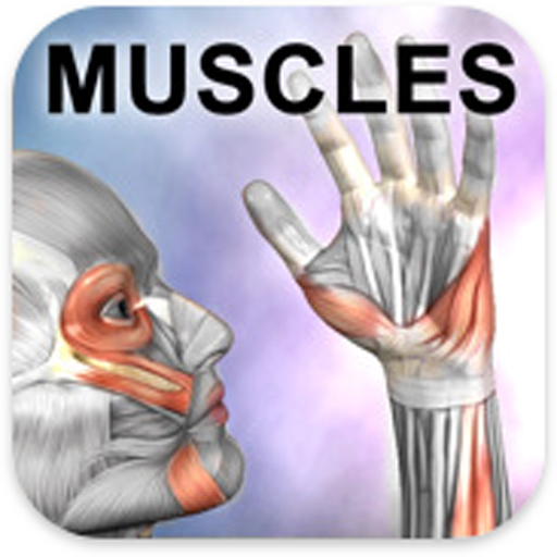Learn Muscles: Anatomy 醫療 App LOGO-硬是要APP