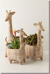 2011.05.02 - Anthropologie Giraffe Pots