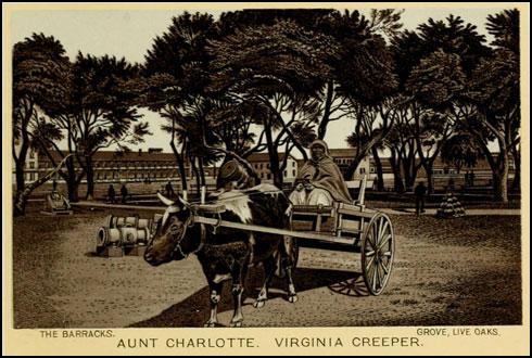 Aunt Charlotte Fort Monroe