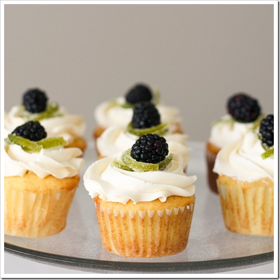 Blackberry Blackbird Cupcakes