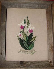 Showy Lady Slipper - original design by Sherry Johnson for class