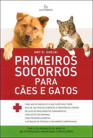 iPrimeiros socorros gato cao