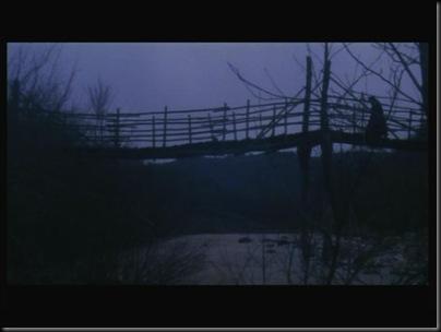 Para qué le vamos a tener miedo a los vampiros y fantasmas, cuando cruzar este puente tiene más peligro que ser doncella en Transilvania.
