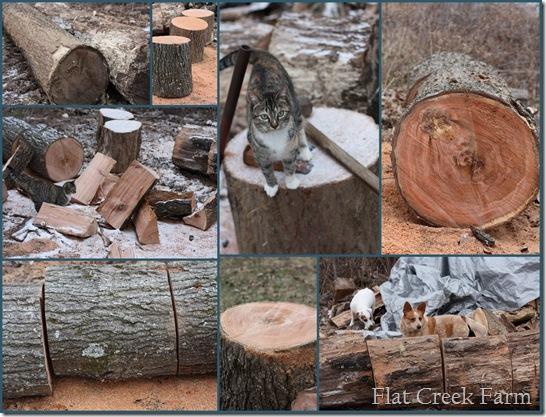 log_collage