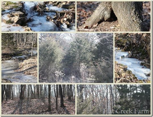 2-4-10 Mosaic_Woods2