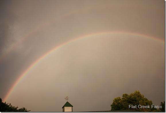 rainbow_dbl