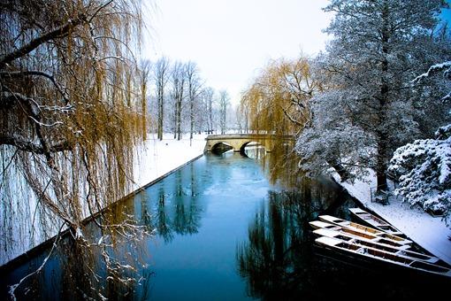 Cambridge Snow-78