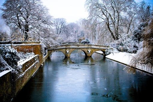 Cambridge Snow-82
