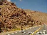 Lhamas na subida para a Salina grande, pouco antes da fronteira Argentina Chile