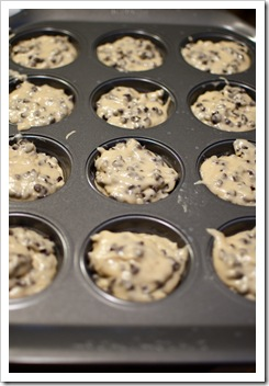 Chocolate Chip Muffins6