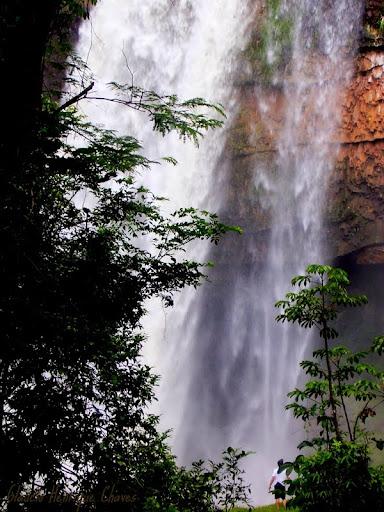 Araguari, a bela do Triângulo Mineiro ZGS07ByOKD