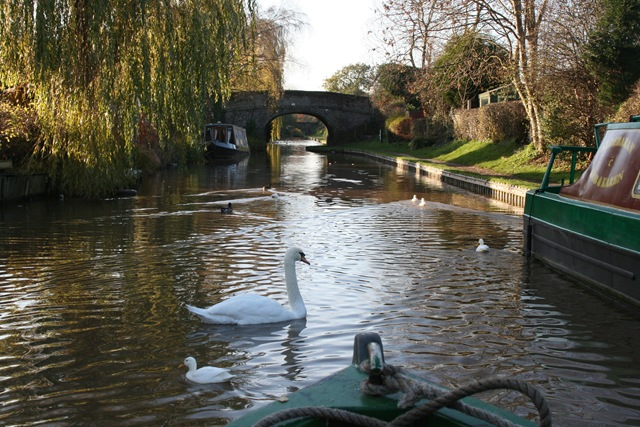 Nov 10 Barge holiday Middlewich 004