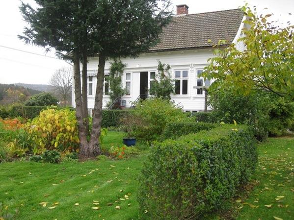 2008-10-19 I hagen (29)