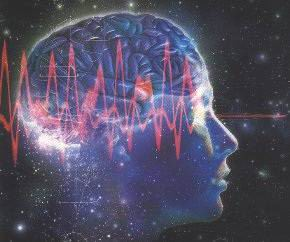 http://lh3.ggpht.com/_Wbrv4TZOFic/ScgOcv8U3lI/AAAAAAAABZM/ap_Izyd1tT0/Cerebro%20hologr%C3%A1fico%20a.jpg