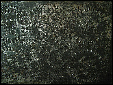 pcpics 1264