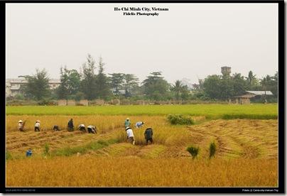 Cambodia-Vietnam trip 901