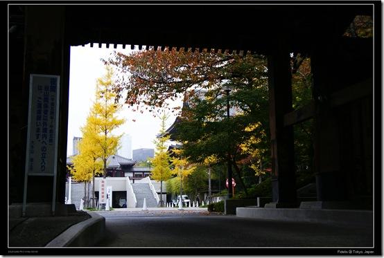 Shibakoen15