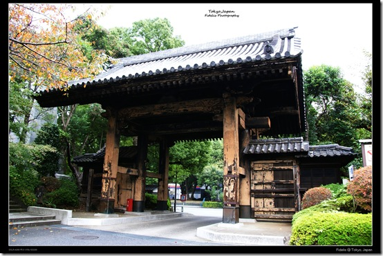 Shibakoen28