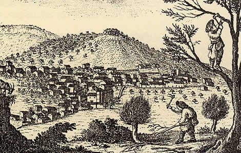 viñeta mapa Despuig