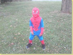 rell as spidey