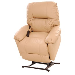 Power-Lift Recliner