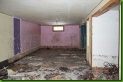 flood damage, basement, mold
