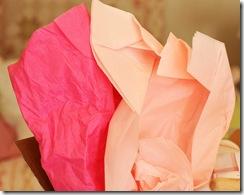 Pink Tissue