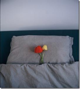 Dormir 1