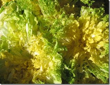 Salade vert jaune