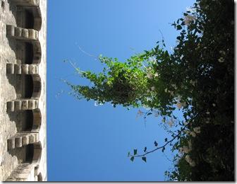 Ciel Avignon