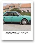 VEDI L'ANNUNCIO IN FORMATO .PDF