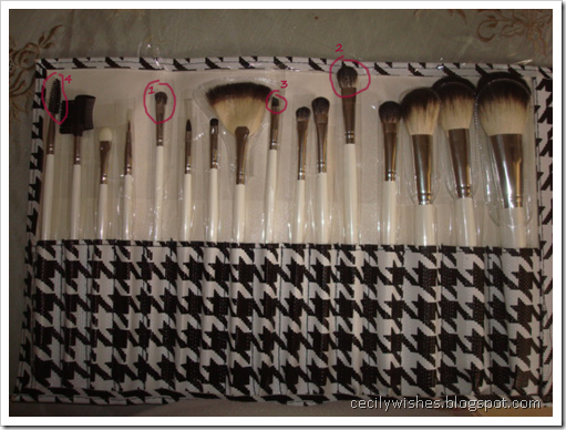 16pc-brushes