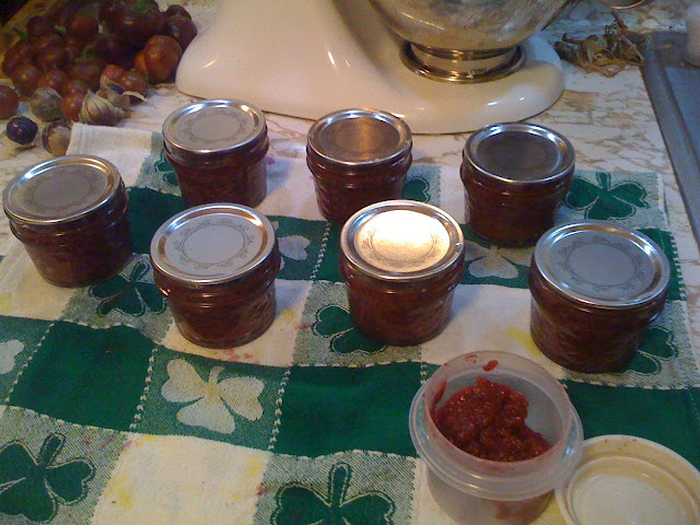 Canning substitutions Photo-745144