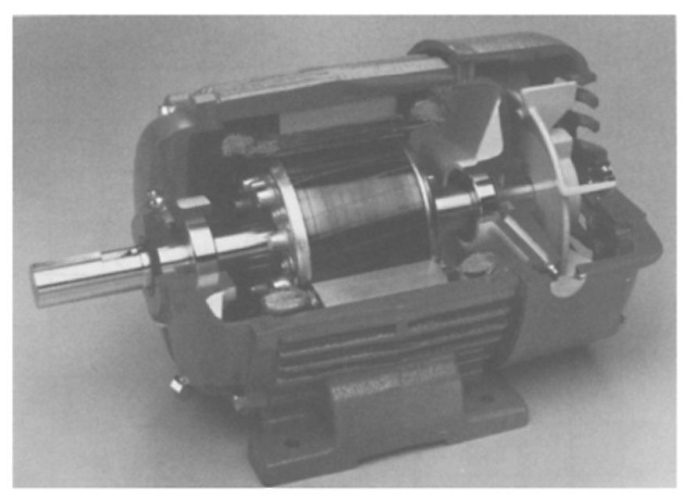 NEMA design B totally enclosed, fan-cooled polypha induction motor. (Courtesy Magnetek, St. Louis, MO.)