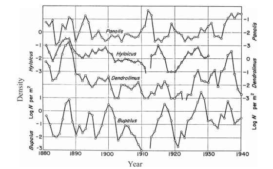 Sixty years of density fluctuations (plotted on a log scale) of four forest Lepidoptera in Europe.