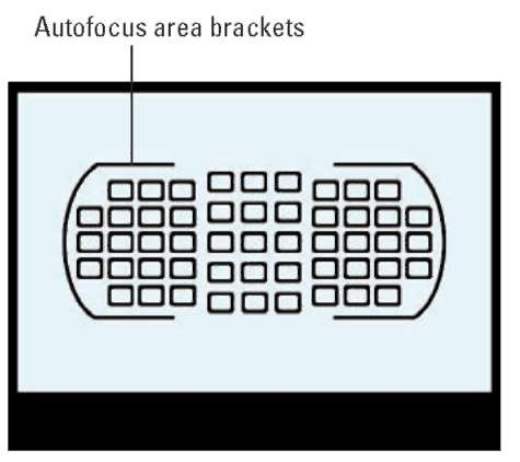 The AF-area mode determines which of the camera's 51 autofocus points are used to establish focus.