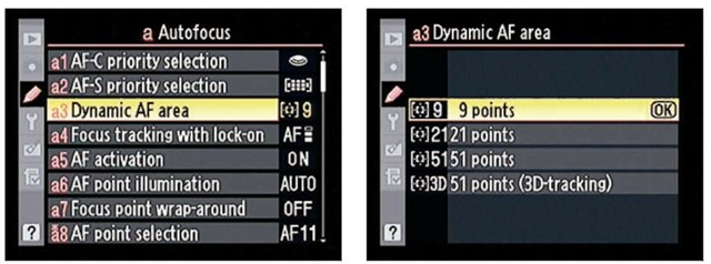 You can modify the number of Dynamic Area points and also choose from two 51-point options.