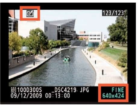 In single-image playback, you can see the file size of the small copy.