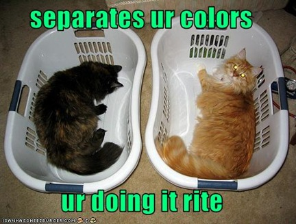 funny-pictures-you-seperate-your-colours1