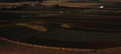 market-gardens-oamaru.jpg