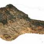 Железный наконечник стрелы, найденный на Гардовом острове, длина около 4 см. Из коллекции А.И. Шаповалова