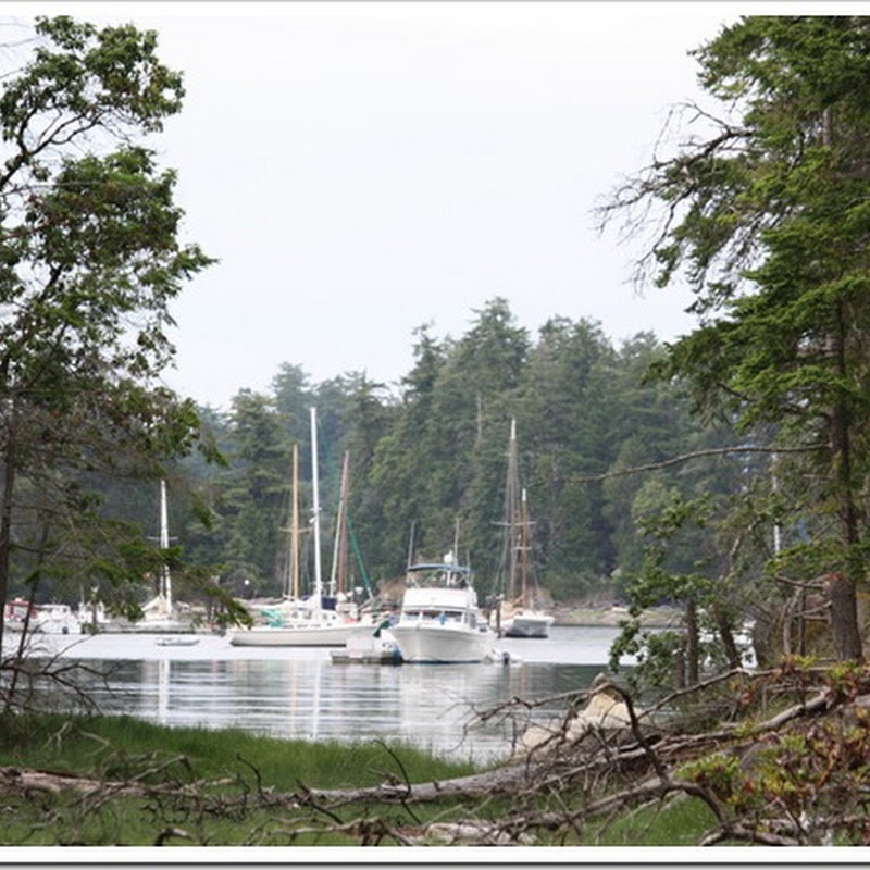 Logbook – Leaving the Gulf Islands