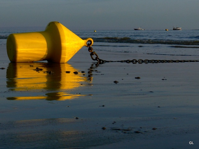 plage 2203