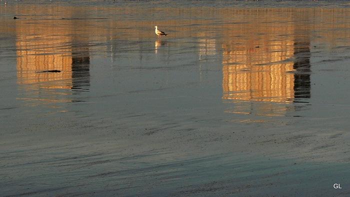 plage 2212