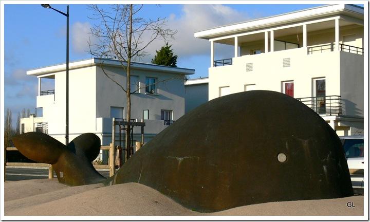 baleine 002