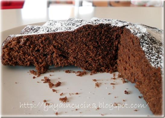 Torta cacao al micro 003