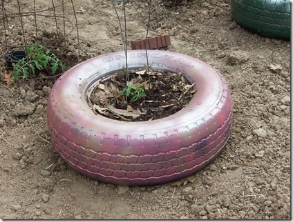 tires and garden 003